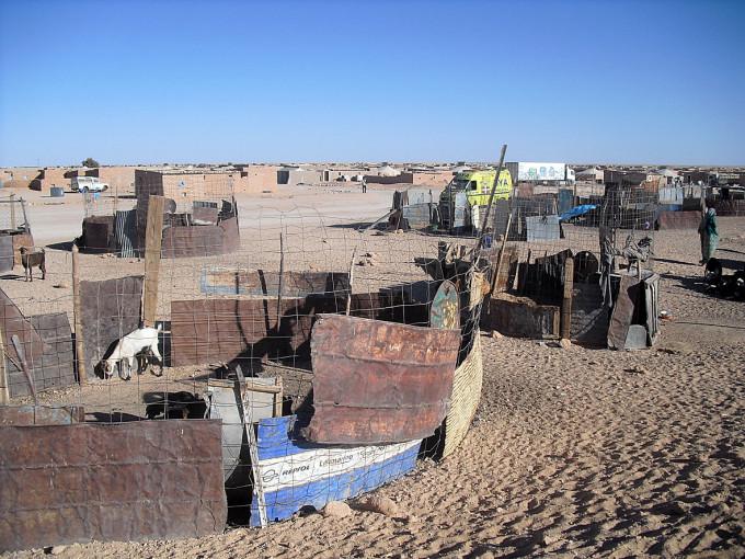 Sahara 2014 - 03