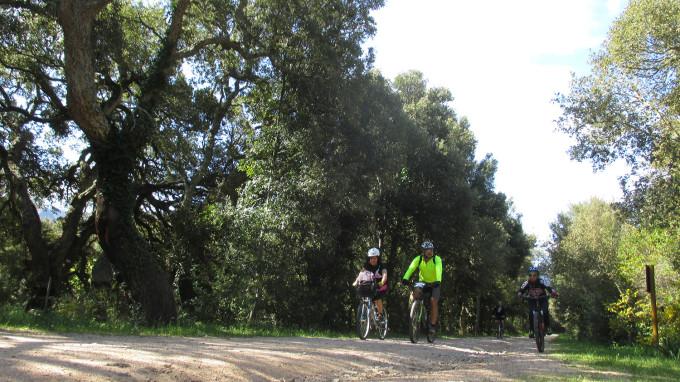 A Calangianus - aprile 2017 QUATTRO
